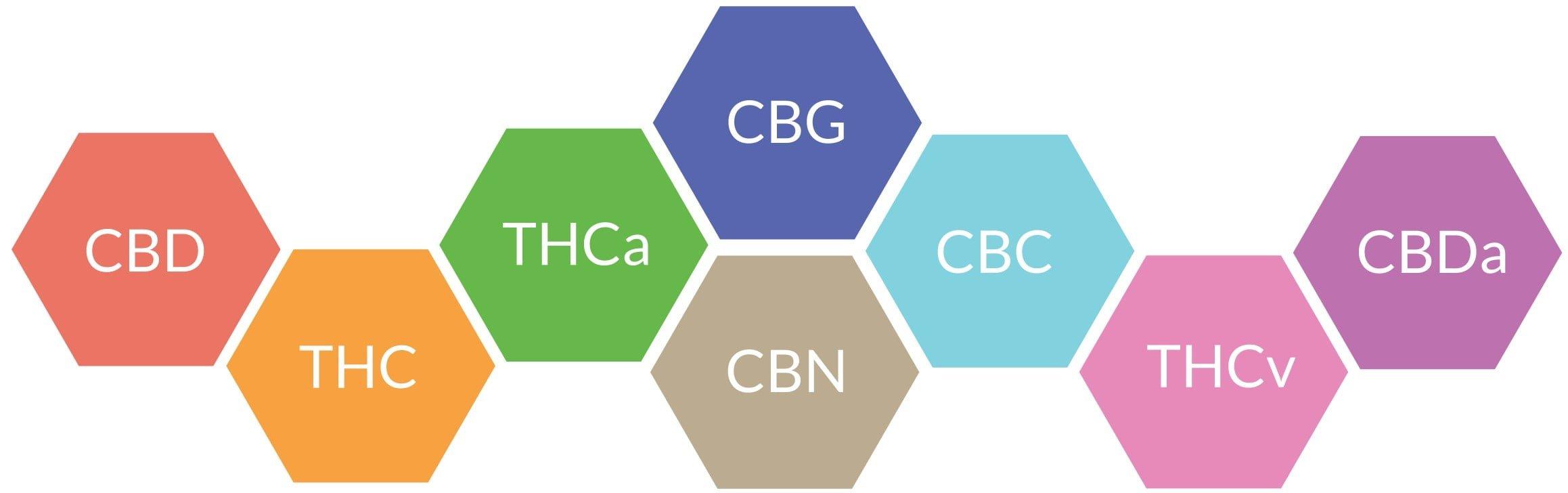 видовете канабиноиди